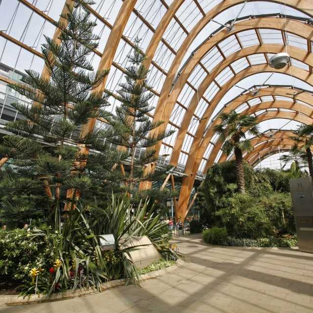 Inside-the-Winter-Garden